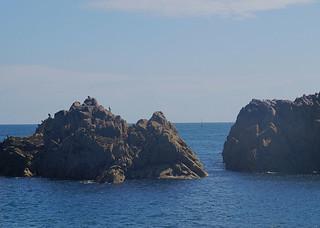 049 Boottocht rond Ile-de-Brehat zeehond