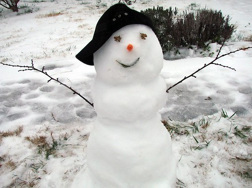 Snowman | by P. Williams