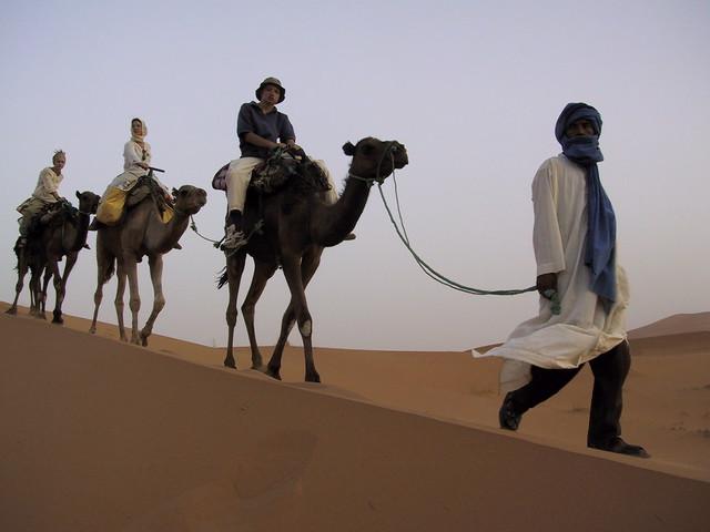 Sahara camel trekking, Morocco