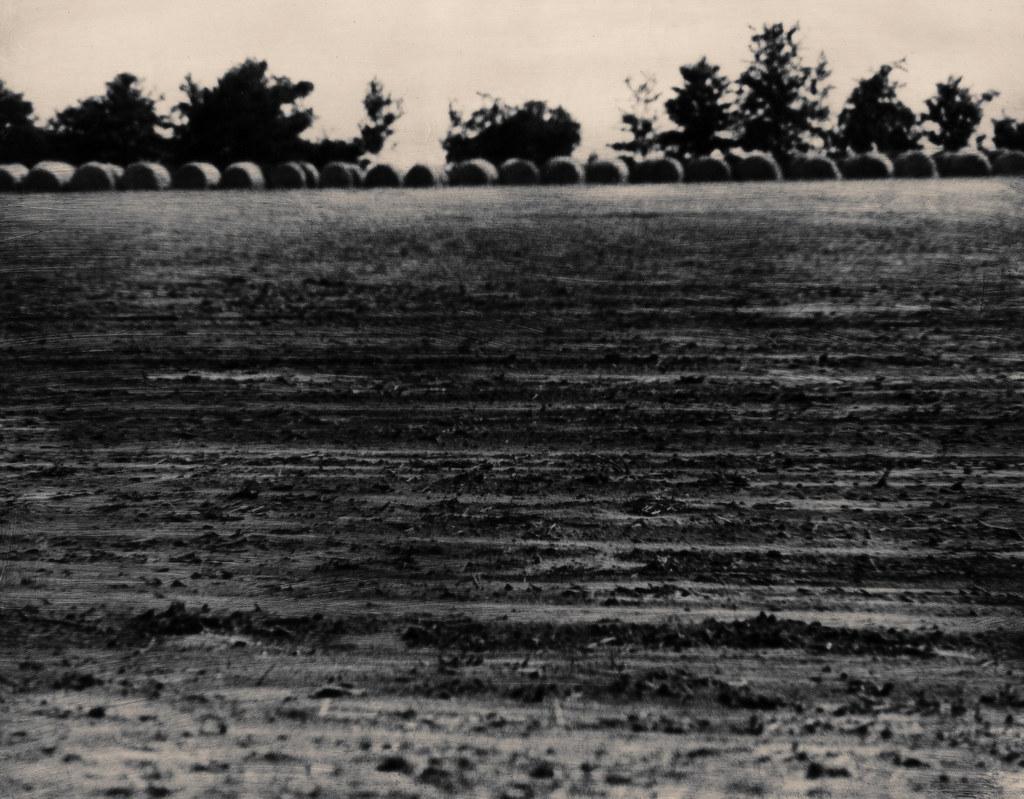 Bales of Hay Outside Augusta, Ga, 1970s