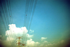 powerlines | by thundered cat