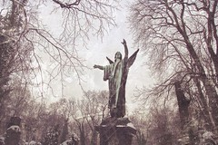 20050222_prague_angel, narnia | by zyphichore