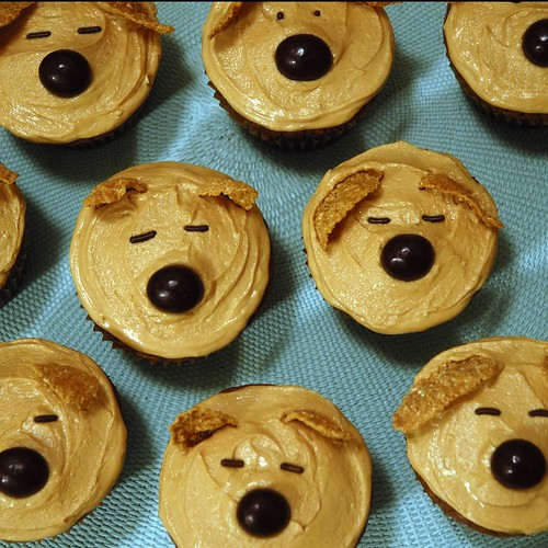 Dog Cupcakes | by show and tell