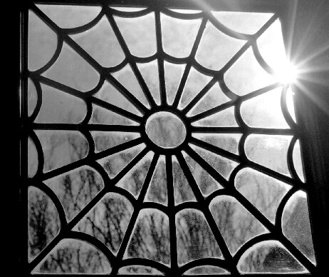 Solar Flare / Spider Web | by Bitter-Sweet-