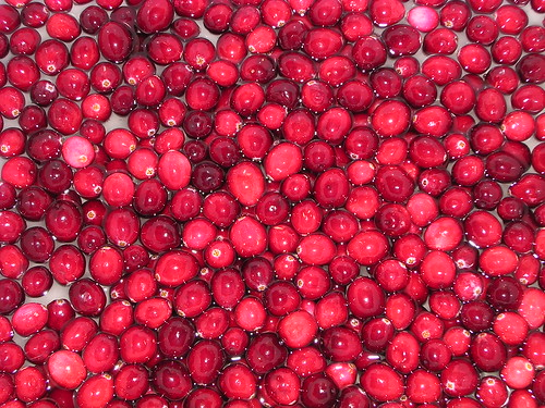 Cranberries | by jillmotts