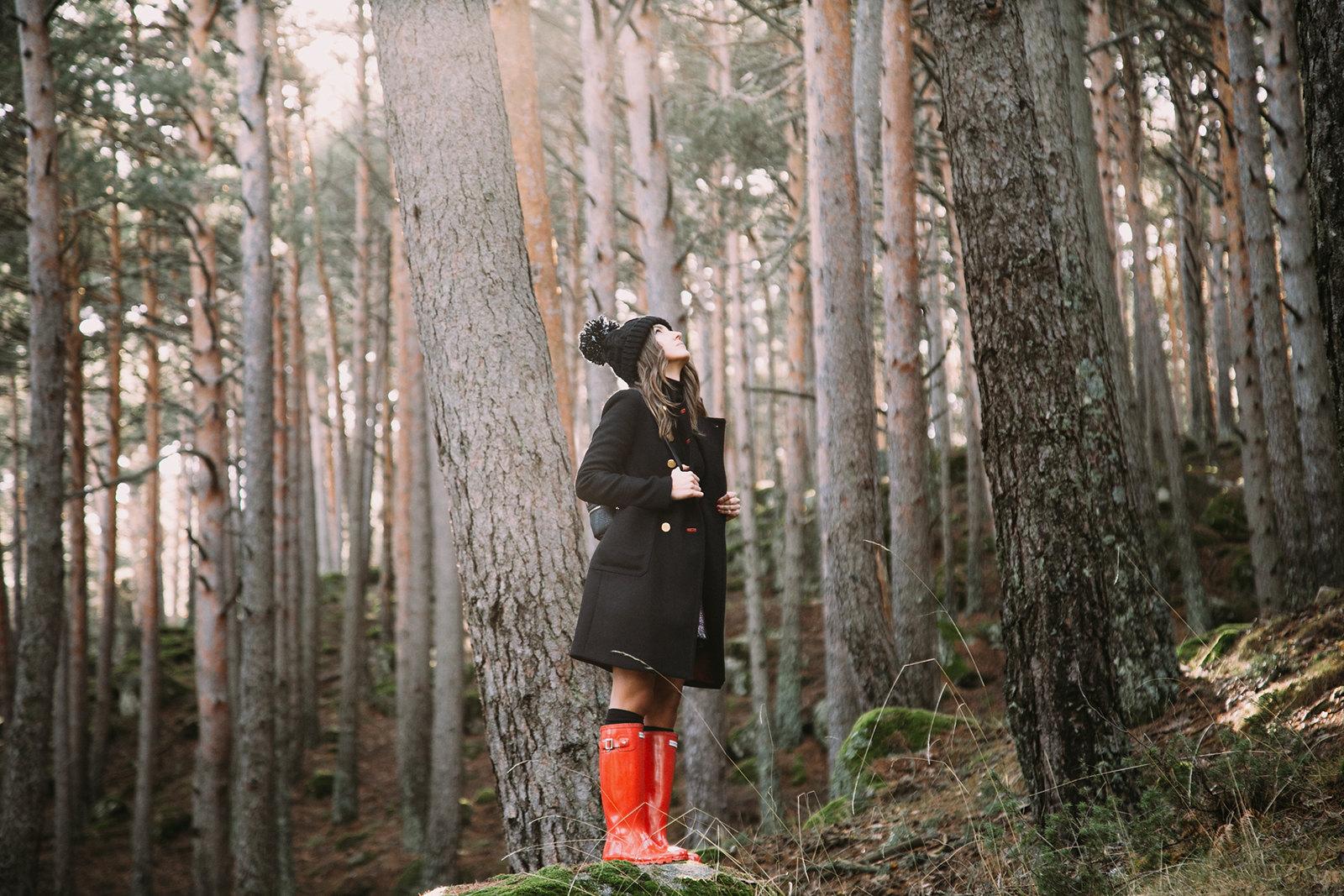 woods-15