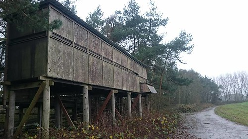 The Old D Res Car park hide