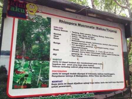 papan informasi bakau