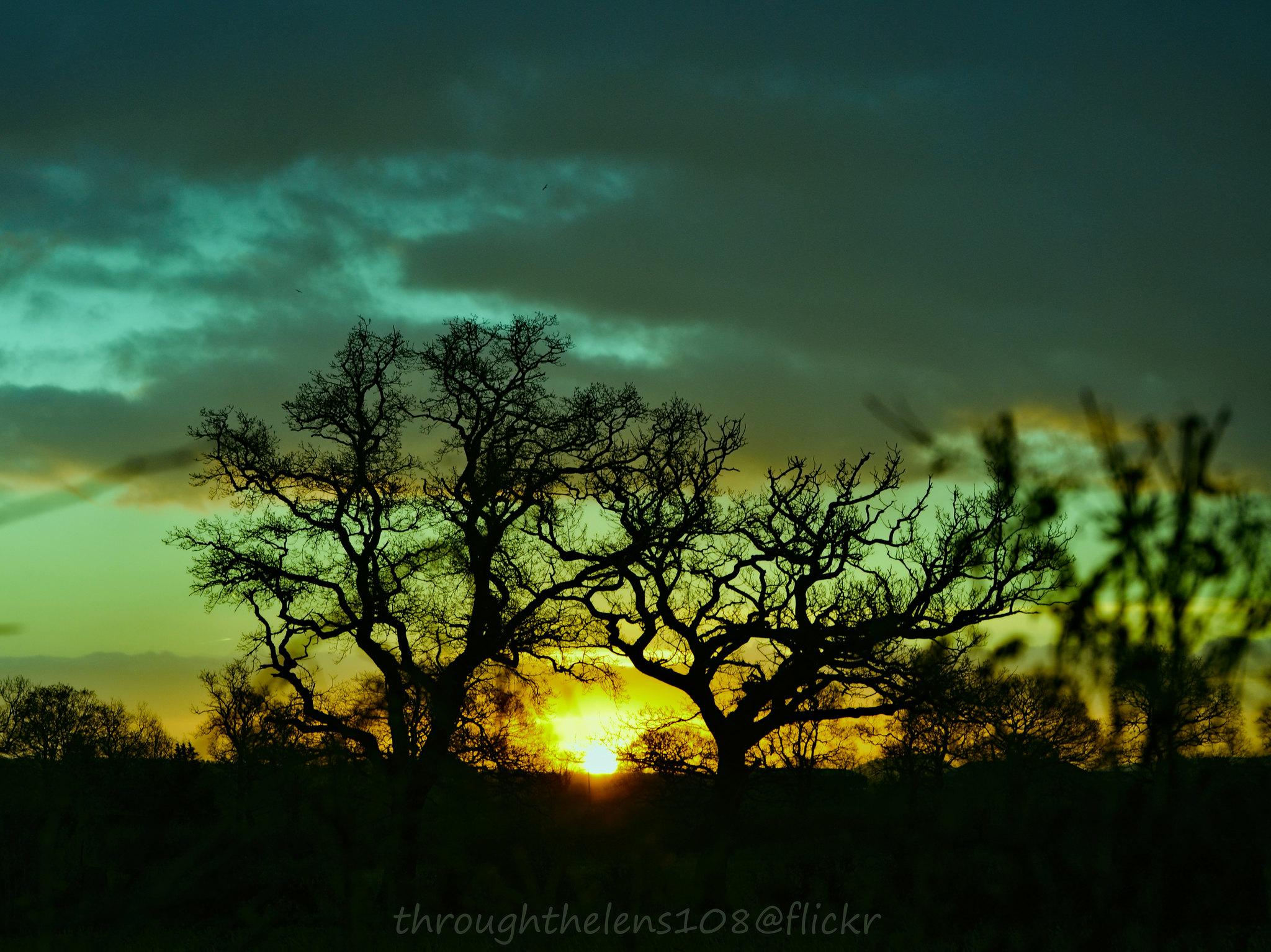 Sunrise on Boxing Day
