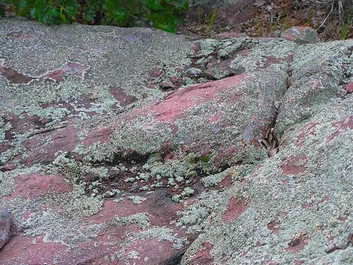 Missouri Red Granite : Missouri granite this red purple sticks up