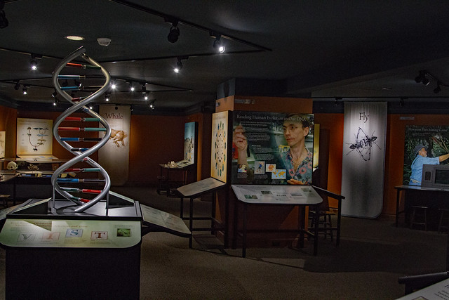 DNA Exhibit