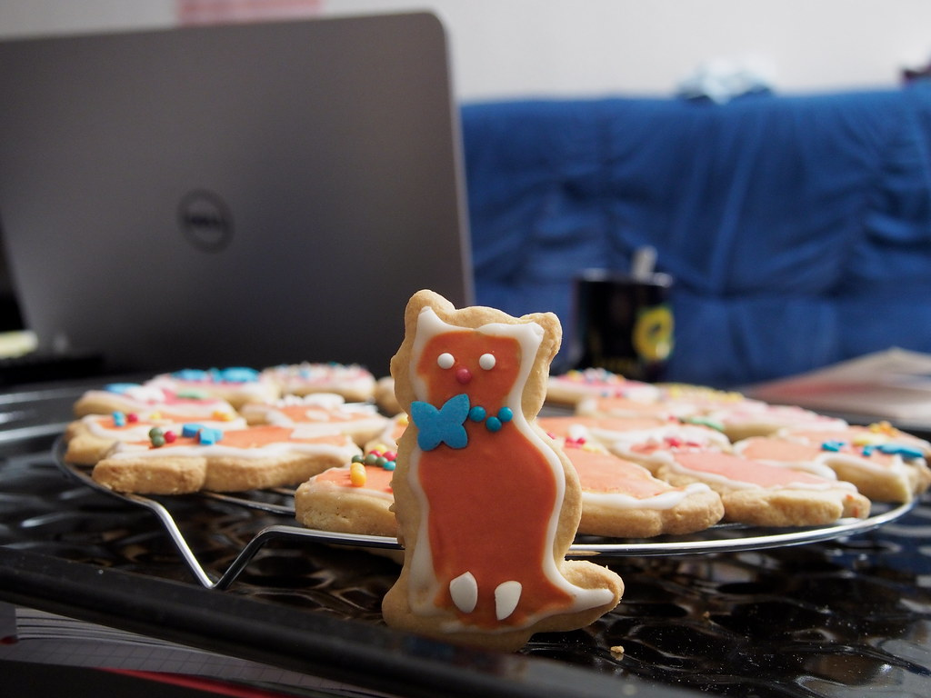 7e0_c228480-cat-cookie