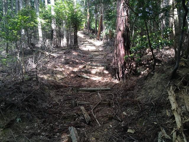 不破の滝 展望台 林間歩道 急登