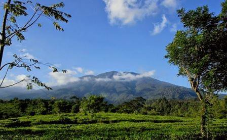 Pendakian Gunung Salak via Cidahu Sukabumi