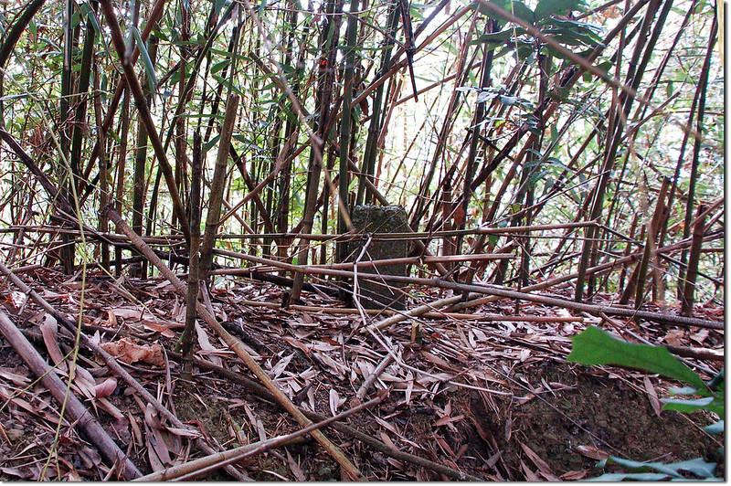 東麻竹湖山水泥柱點位