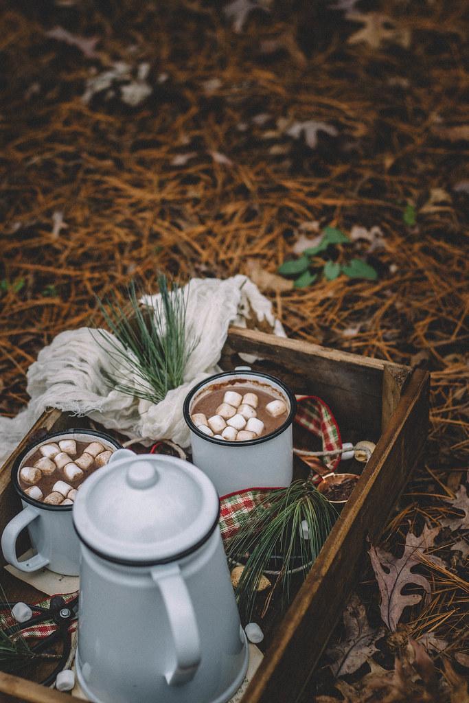 Chai Tea Hot Chocolate   TermiNatetor Kitchen