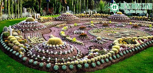 tour du  lịch bờ tây nước mỹ vườn hoa xương rồng Cactus garden