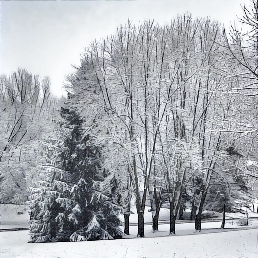 First Snow - Prisma 340/366