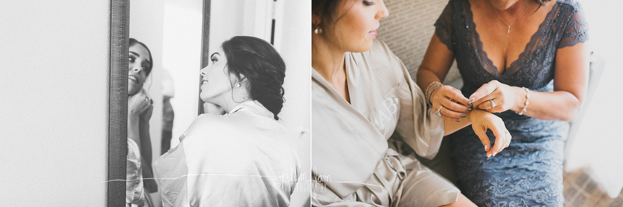 AllieRyanWedding-Blog03-PlumJamPhotography