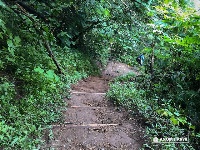 Jalur Bukit Coban Talun