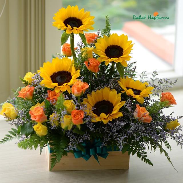 hoa hướng dương chúc mừng sinh nhật