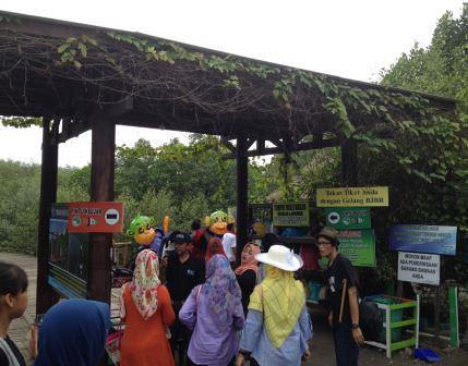 masuk area hutan mangrove