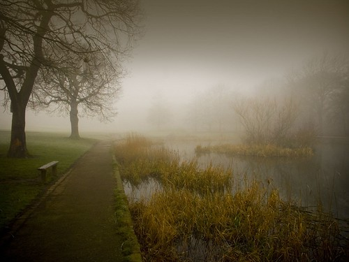 A bleak Duck Pond | by tricky (rick harrison)