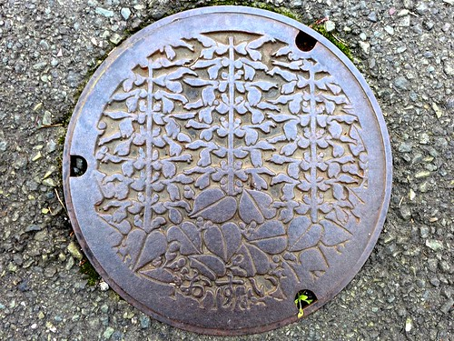Yawatahama Ehime, manhole cover 2 (愛媛県八幡浜市のマンホール2)