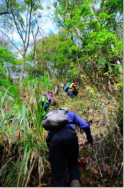 登山口陡登路段