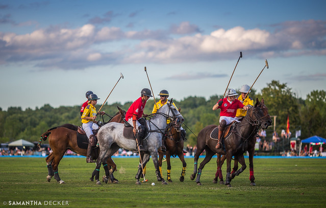 Polo Match in Saratoga