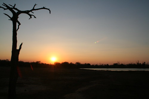 Sunset at the watering hole in Ndlovu