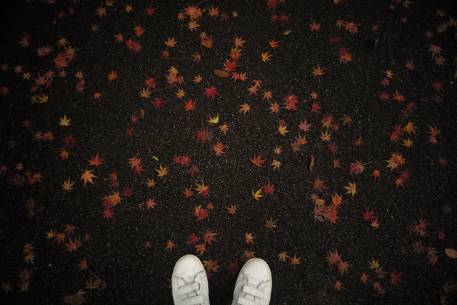 With fallen leaves