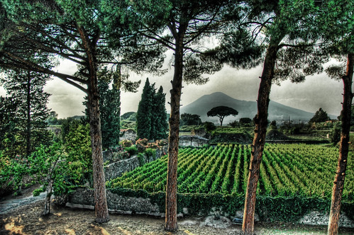 Pompeii Fertile Garden under the Shadow of Vesuvius | by Stuck in Customs