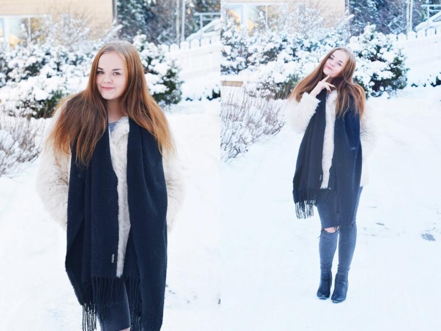 Asukuvia lumessa ft1