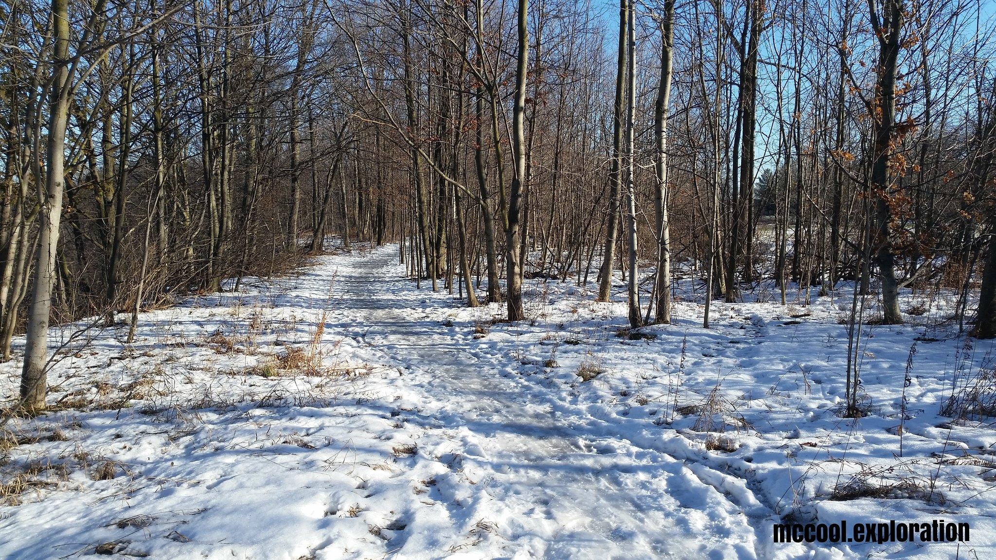 Bronte Creek 07