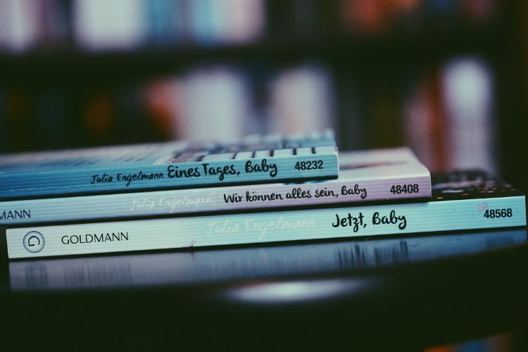 Jahresbücher (16)