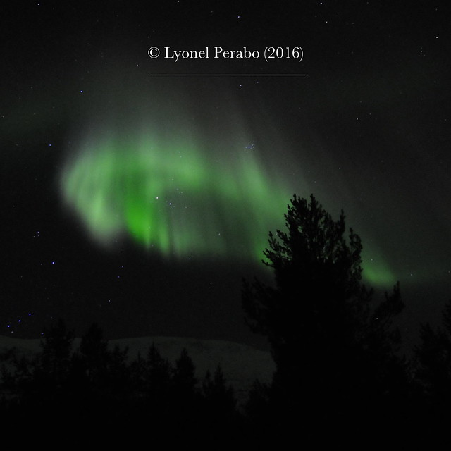Northern_Lights_20_12_2016_V