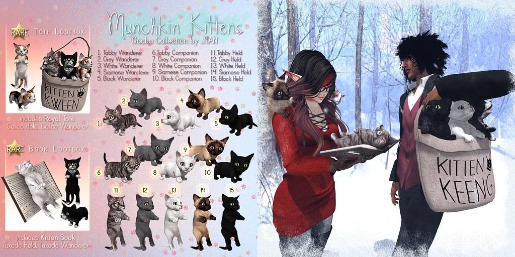 JIAN Munchkin Kittens (TFC December)