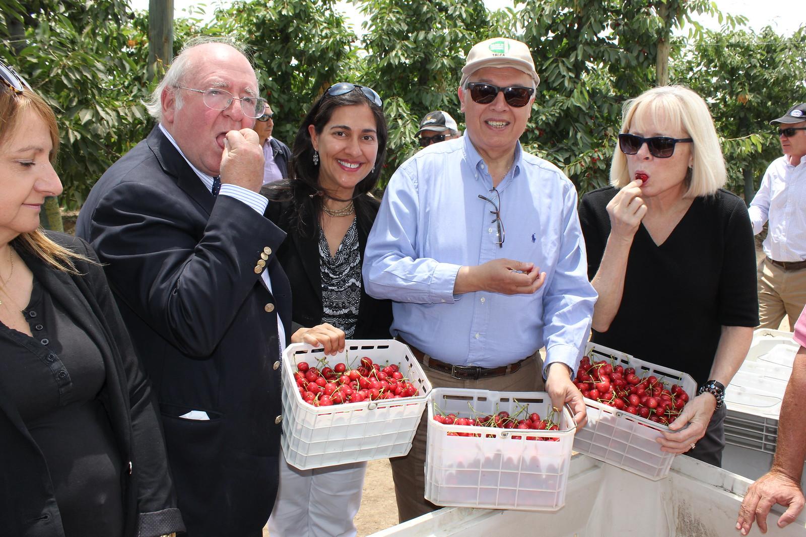 Embajadora norteamericana en recorrido por Fundo Los Molinos con Fedefruta