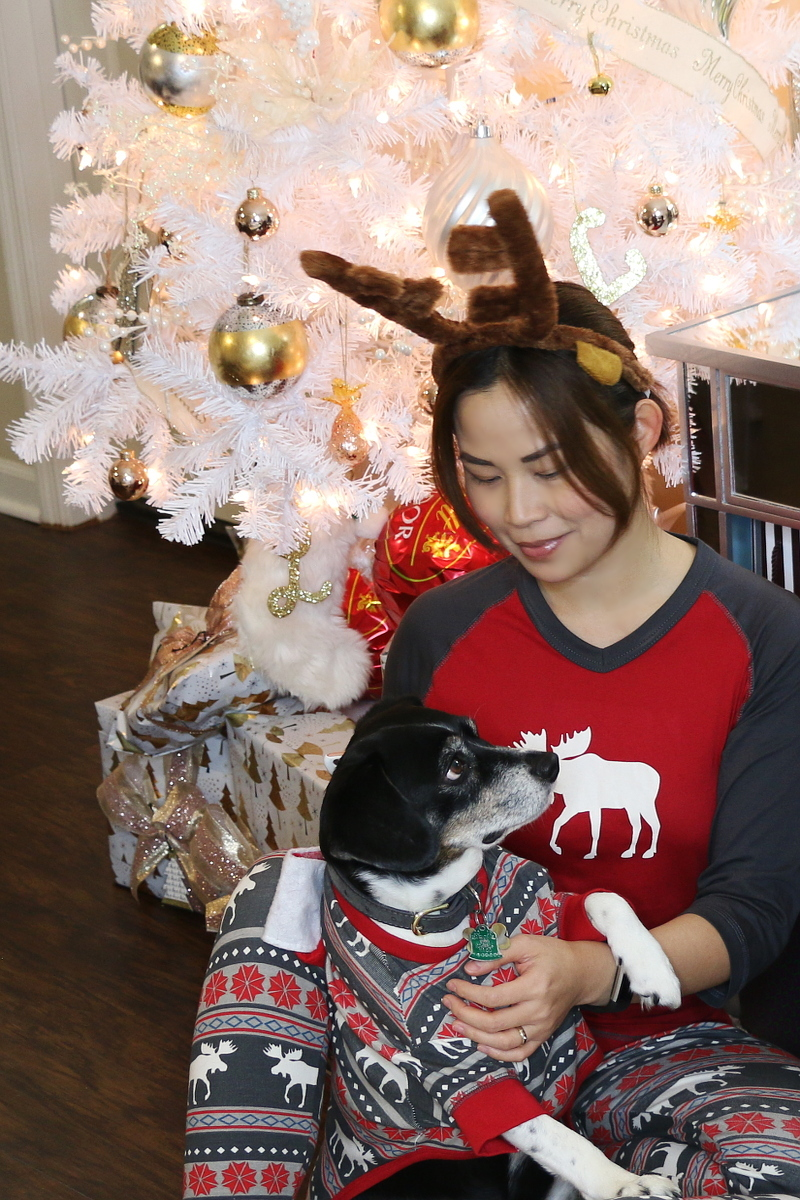 Christmas-pajamas-matching-dog-pets-1