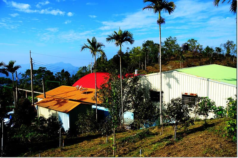卓武咖啡農場