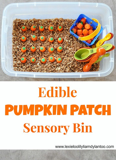 Edible Pumpkin Patch Sensory Bin