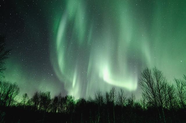 Nortern lights over Troms