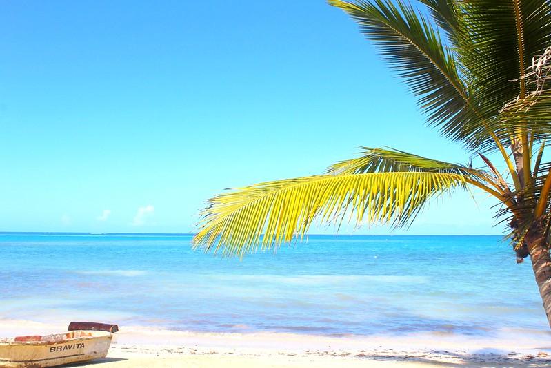 Paradise 2