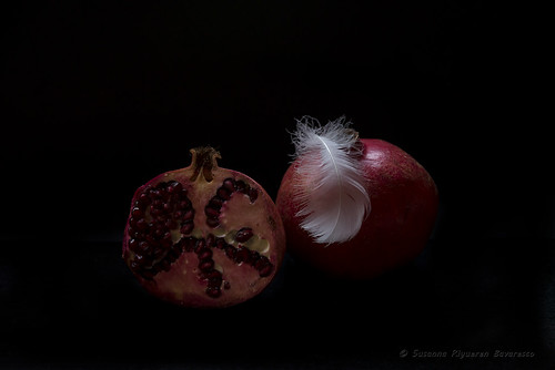 Pomegranates & Feather