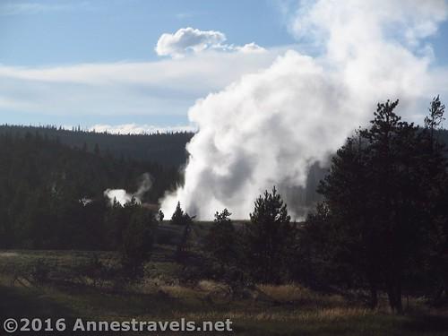Daisy Geyser erupts from afar, Upper Geyser Basin, Yellowstone National Park, Wyoming