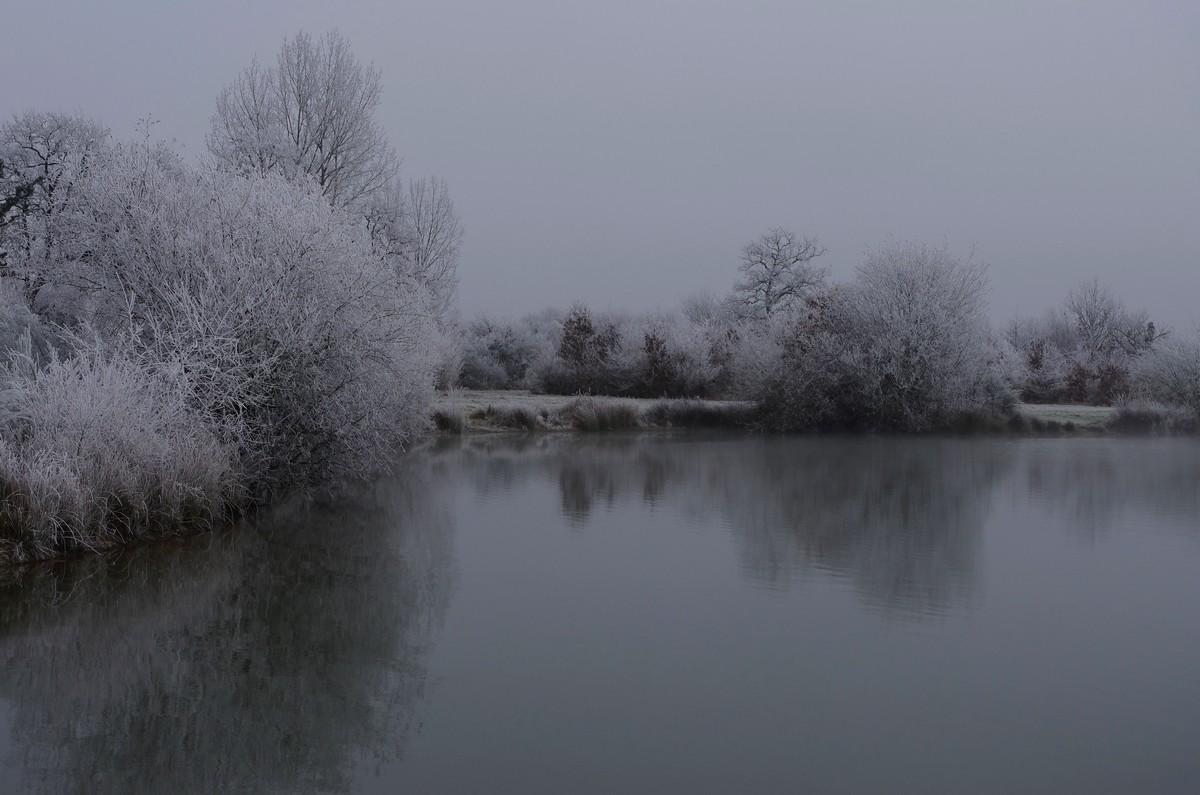 L'hiver 31888416131_78bd14a5a1_o