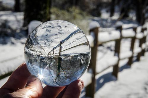 Snow Globe (25 of 31)