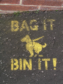 BAG IT BIN IT! | by Leo Reynolds