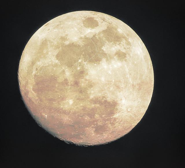 Wolf Moon-Edit.jpg